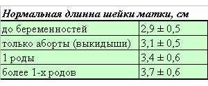 Шейка матки при беременности: норма длины по неделям, как изменяется, какие размеры имеет / mama66.ru