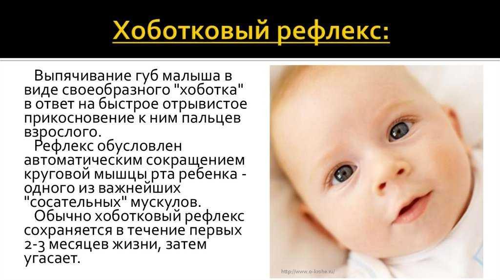 Сосательный рефлекс у новорожденных: что это такое, варианты нормы и причины слабого инстинкта, особенности явления у недоношенных детей, возможное лечение патологии