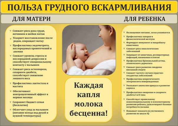 Можно ли кормить грудью при температуре: что делать, если последняя поднялась и высокая, как влияет жар мамы на качество молока для гв ребенка, мнение комаровского