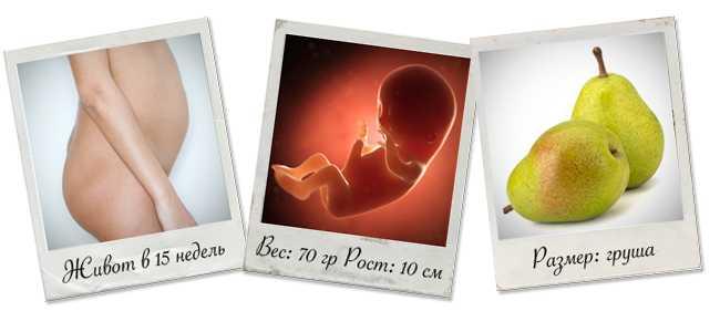 5 неделя беременности: признаки и ощущения женщины, симптомы, развитие плода