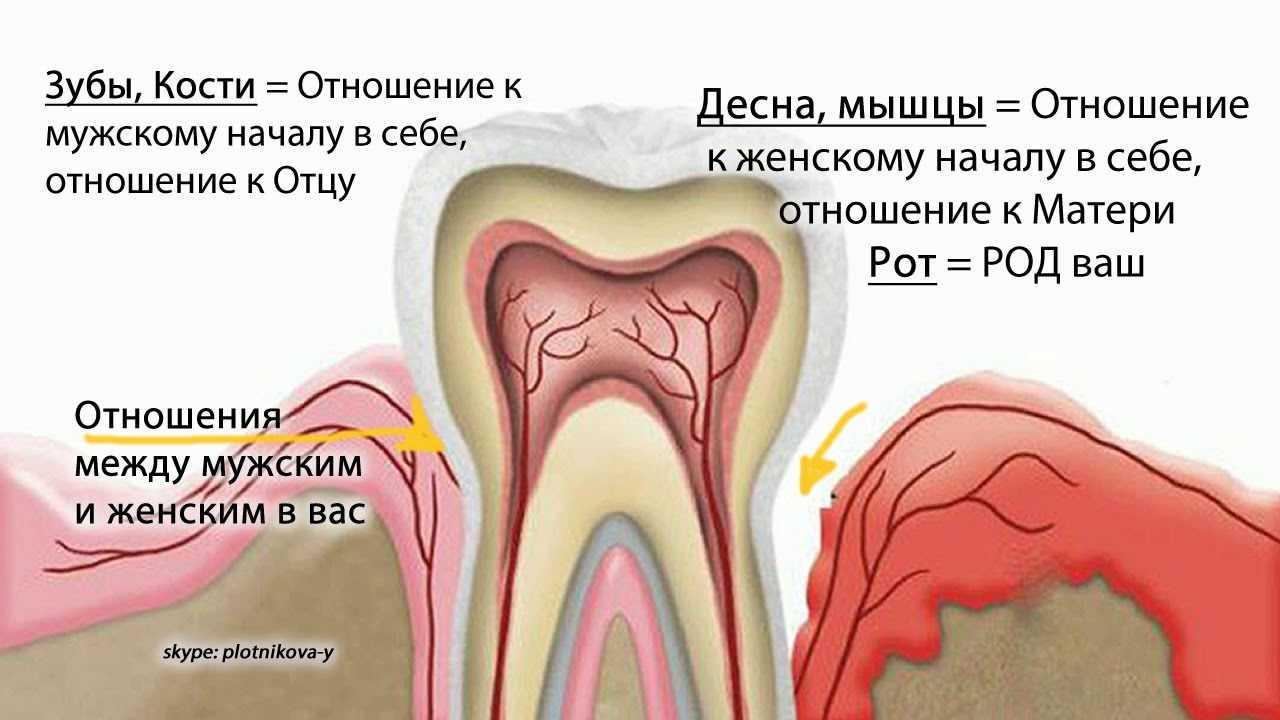 Психосоматика болезней зубов и десен