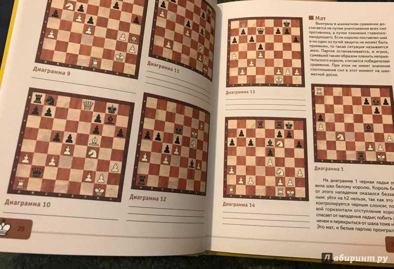 25 интересных фактов о шахматах - zefirka