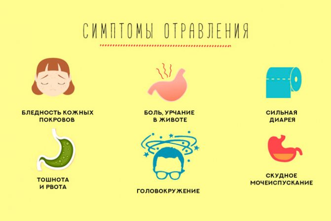 Психосоматика. почему возникает тошнота и отравление?