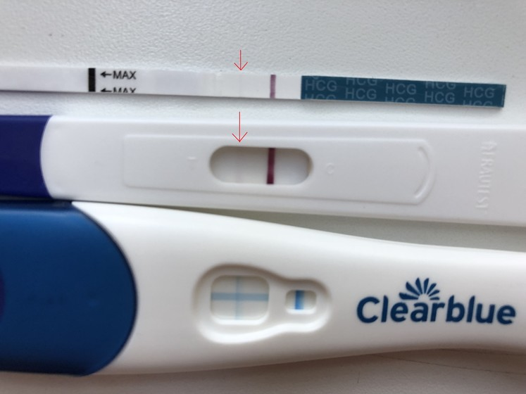 Тест на беременность «ева»
