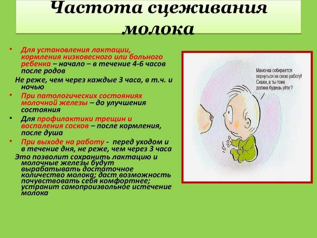 Прекращение лактации по рекомендациям. опыт одной мамы. прекращение кормления грудью: застой молока и сцеживание
