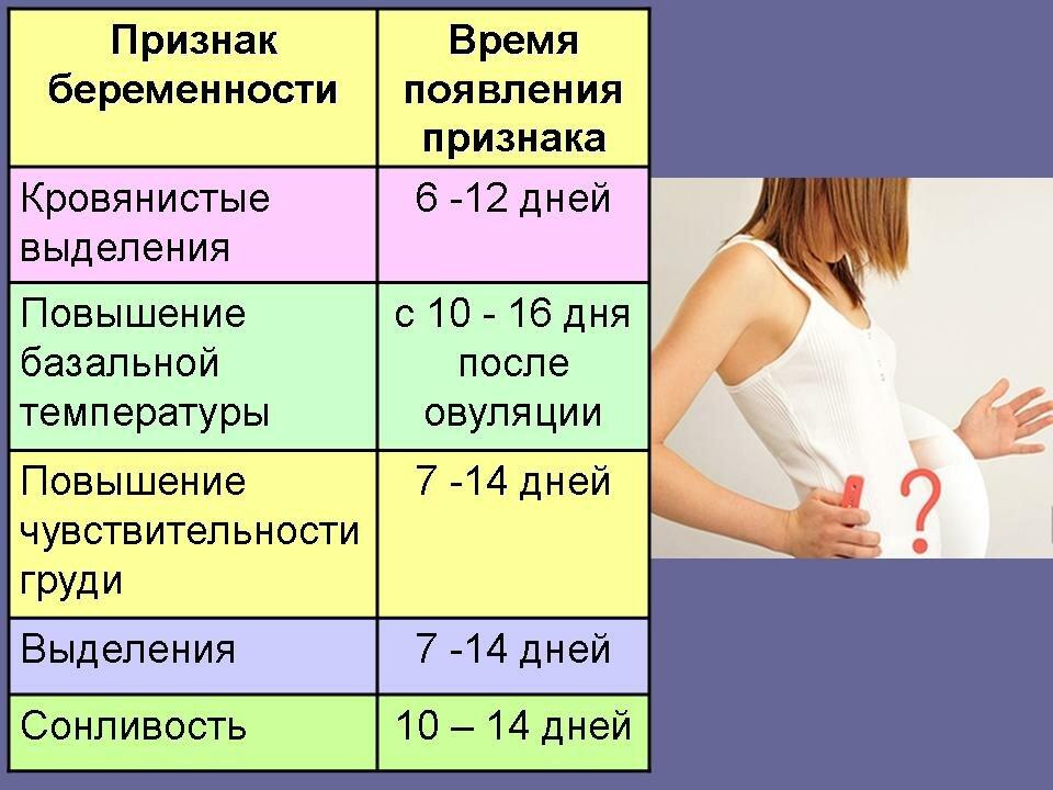 Температура при беременности | уроки для мам