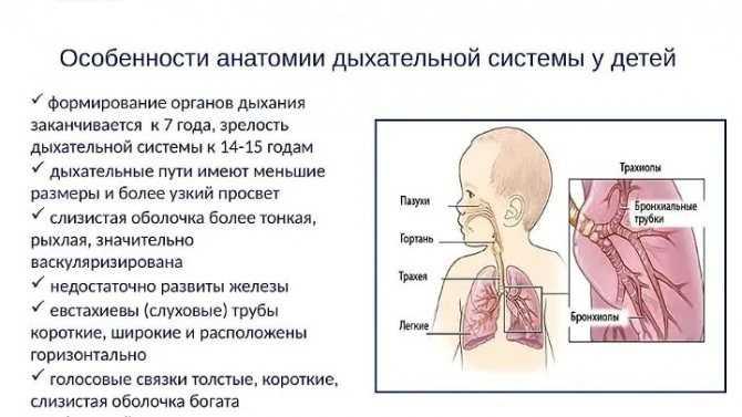Как дышит ребенок в утробе матери