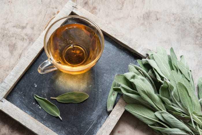 чай шалфей противопоказания