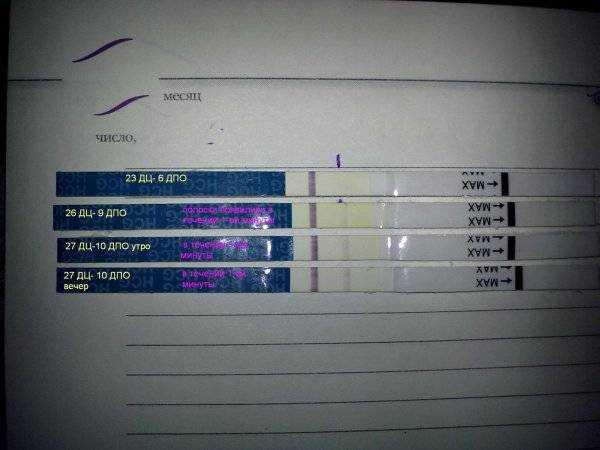 Календарь зачатия, рассчитать календарь зачатия, календарь беременности, срок беременности