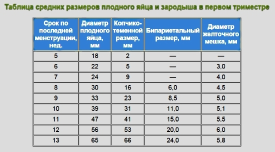 Плодное яйцо: размеры по неделям, виды узи, свд и ктр / mama66.ru