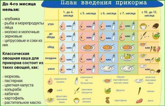 Первый прикорм, как правильно вводить и подробная схема-таблица введения прикорма для детей