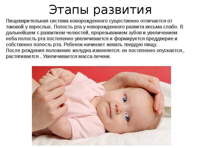 Объем желудка грудного ребенка
