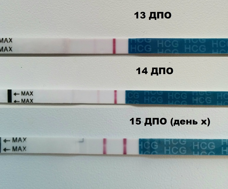 Через сколько дней можно делать тест на беременность