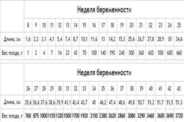 Вес ребенка на 32 неделе беременности: нормы для плода в таблицах на узи