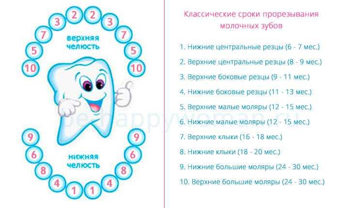 Последовательность прорезывания зубов у детей: симптомы и схема