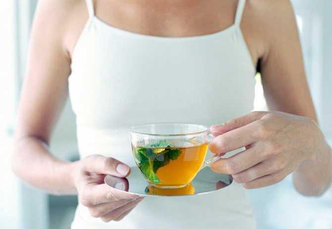 Зеленый чай при беременности на ранних и поздних сроках: можно ли пить?