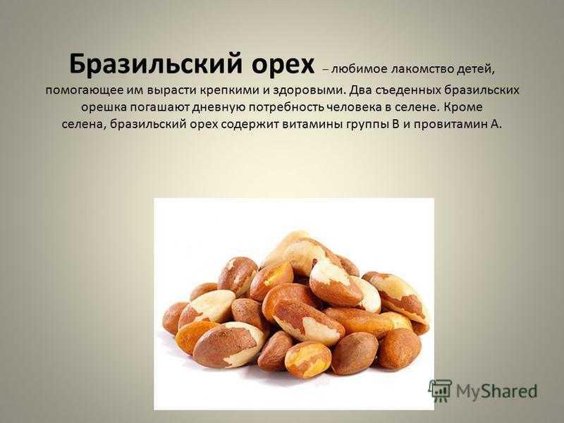 Аллергия на кедровые орехи: причины возникновения, симптомы и диагностика