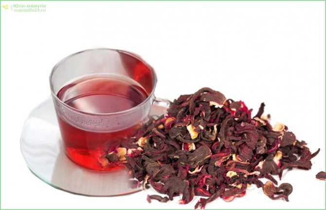 Иван-чай при беременности: можно ли пить на ранних и поздних сроках