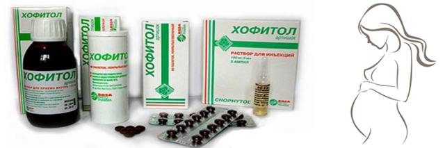 Можно ли пить хофитол при беременности и для чего его назначают врачи