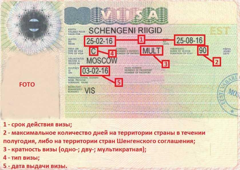 Как получить шенгенскую визу в 2020 году: сроки, цены, образец анкеты   авианити