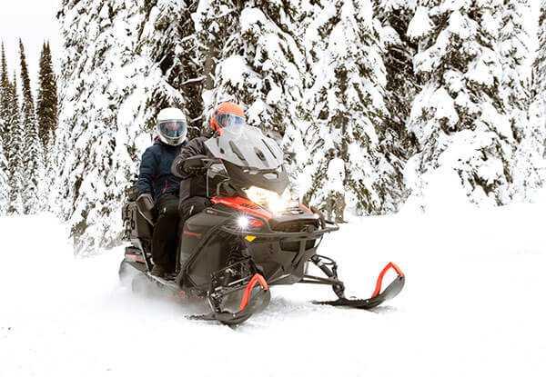 Квадроциклы на бензине: обзор мини-моделей, на 125 кубов, взрослых и других вариантов, как выбрать лучший