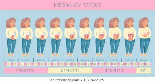Как и когда происходит зачатие ребенка: оплодотворение яйцеклетки по дням (фантастическое видео)
