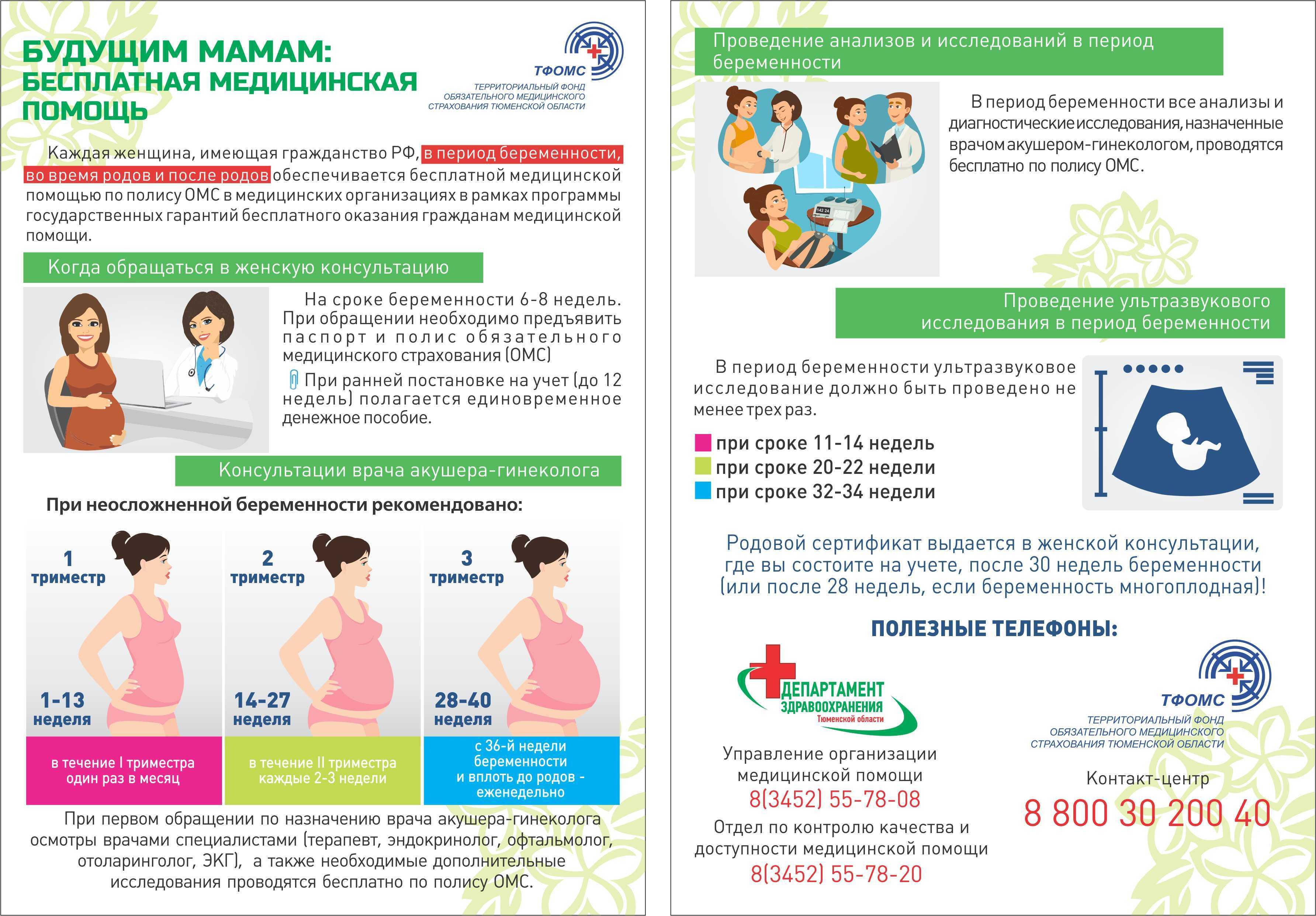 Развитие плода на 24 неделе беременности (18 фото): что происходит с малышом, вес, рост и размеры ребенка на 23-24 неделе, как выглядит плод и ощущения