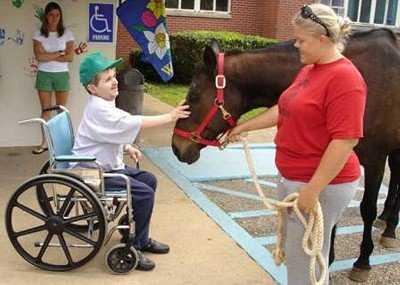 Иппотерапия: это занятия для детей инвалидов при аутизме, дцп, лечение, лошади, история