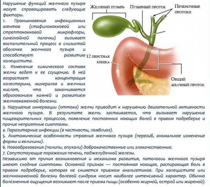 Как лечат холецистит с застоем желчи?