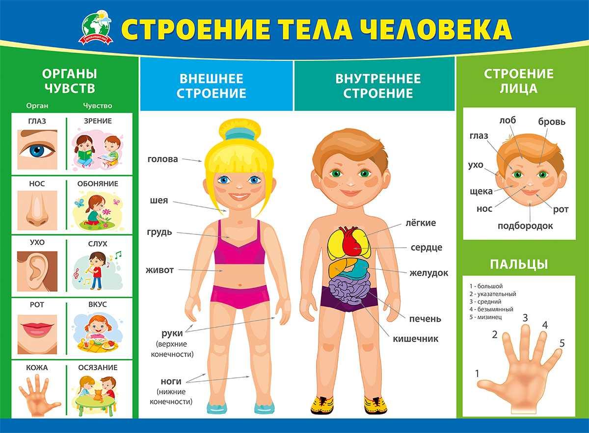 Занятия-дидактические игры по лексическим темам