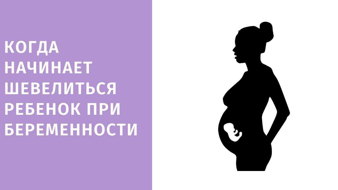 Когда начинается шевеление плода - при первой, второй, третьей беременности