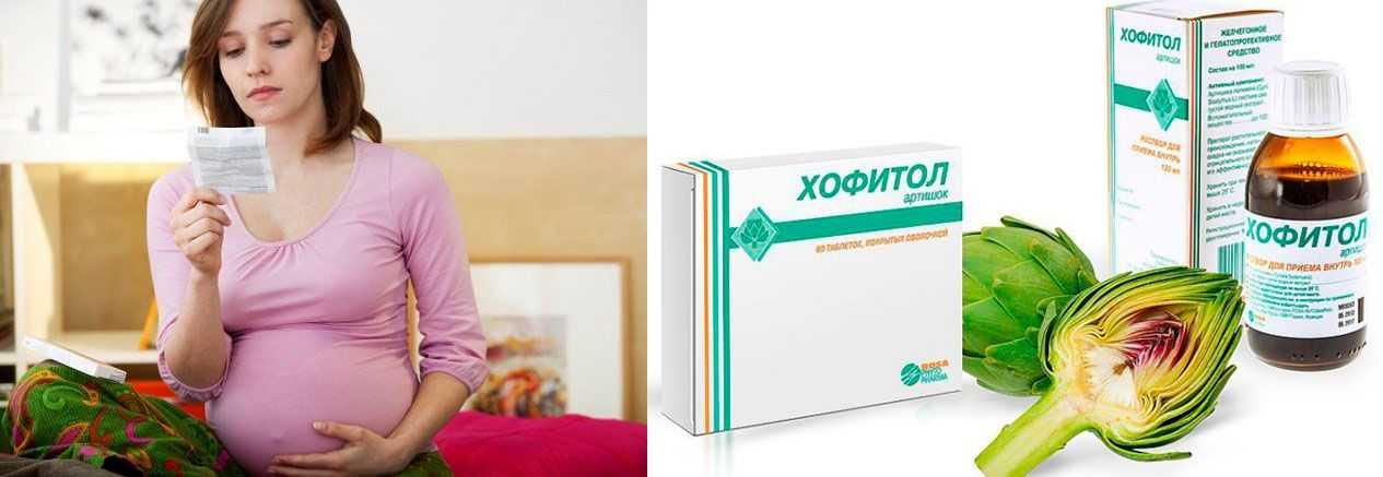«хофитол» при токсикозе: отзывы беременных о препарате