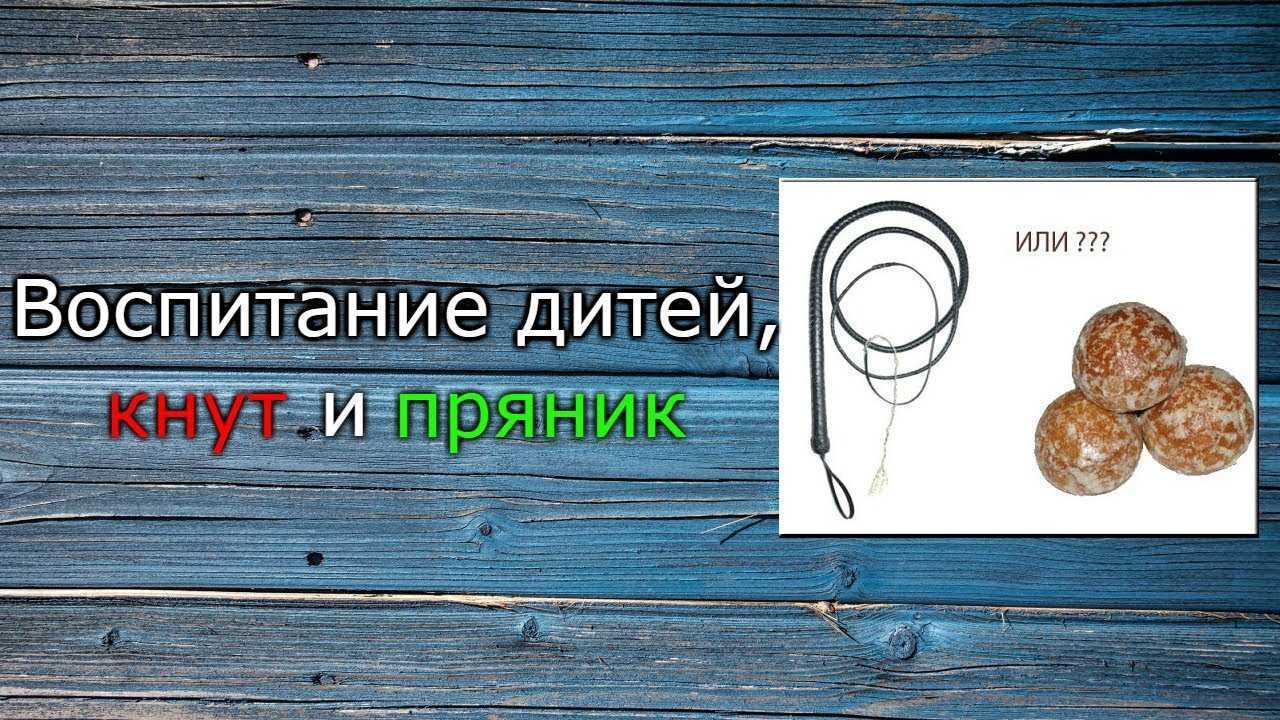 """Кнут или пряник. что выбрать """"кнут или пряник?"""