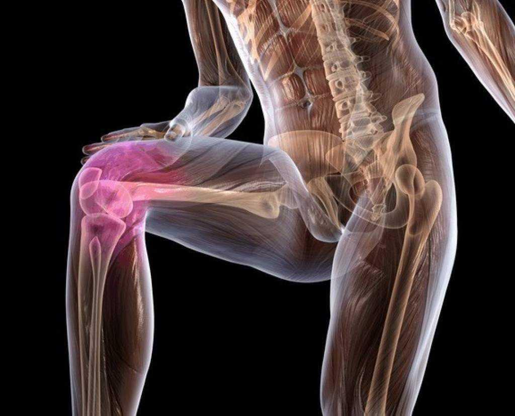 Заболевания суставов. полная информация (виды, профилактика, причины, симптомы, лечение)