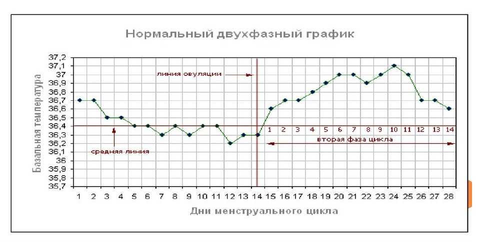 Базальная температура при овуляции: нормы, отклонения, значение