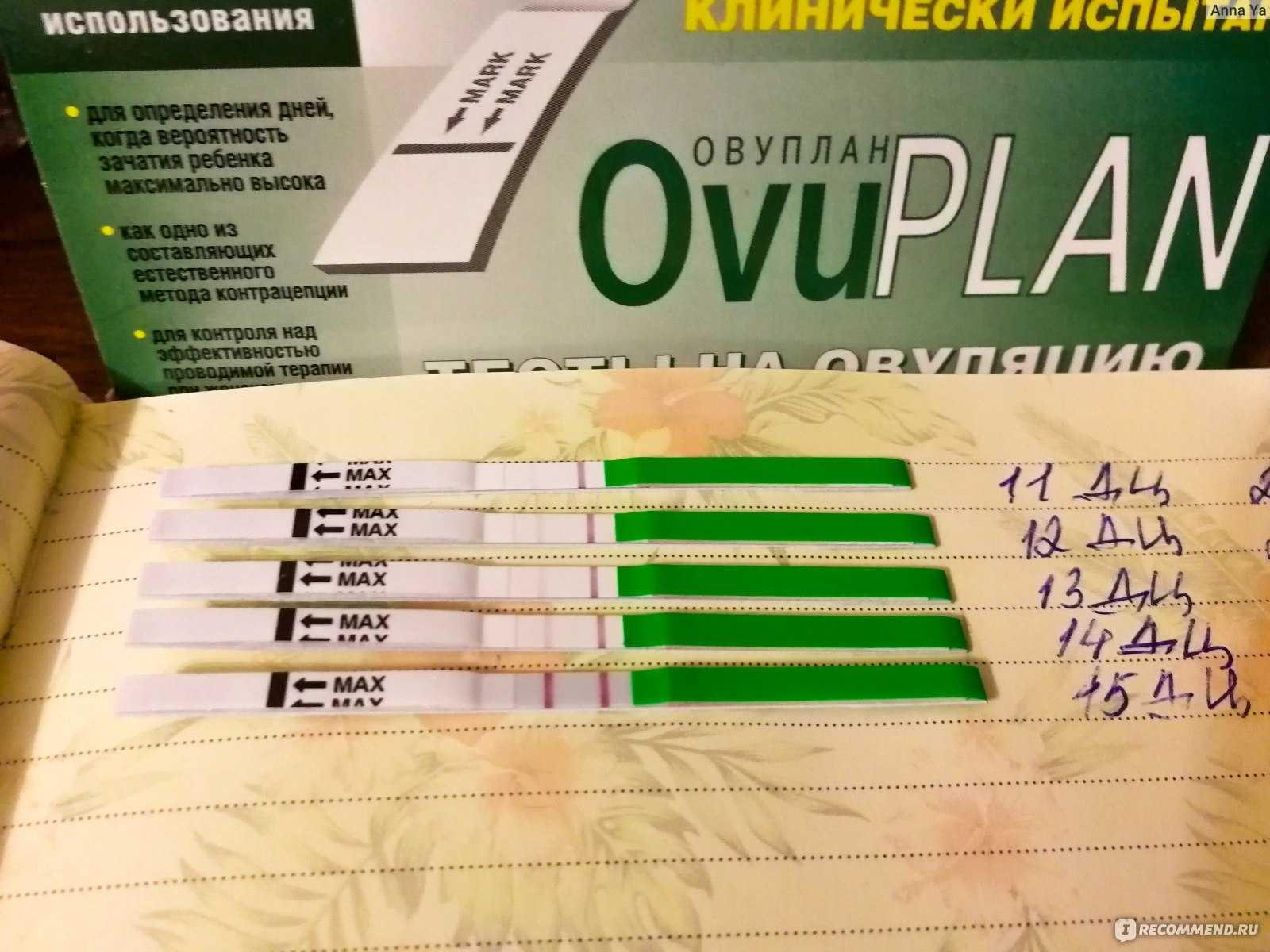 Инструкция по применению теста на овуляцию «эвиплан» при планировании беременности