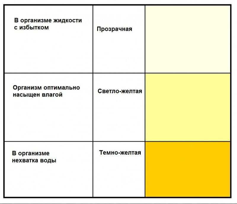 Почему темная моча у ребенка: причины по цветам, черные точки в моче | mfarma.ru