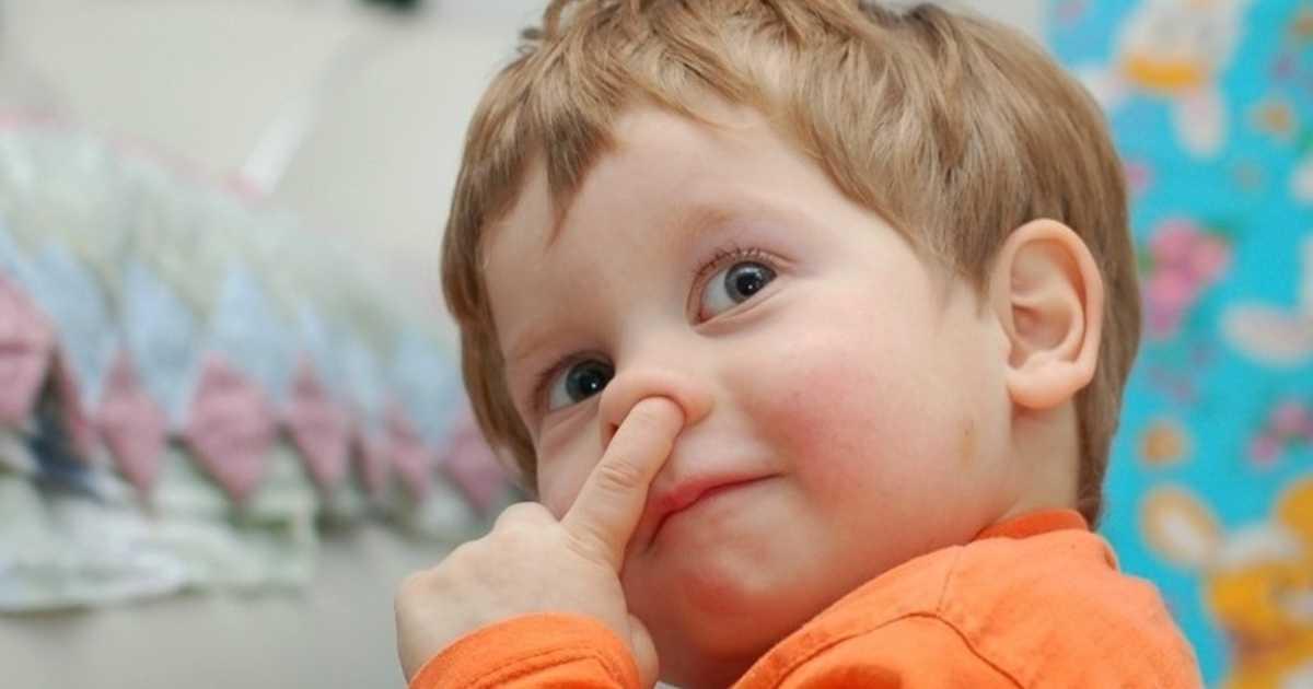 Почему люди едят козявки из носа - вред и польза pulmono.ru почему люди едят козявки из носа - вред и польза