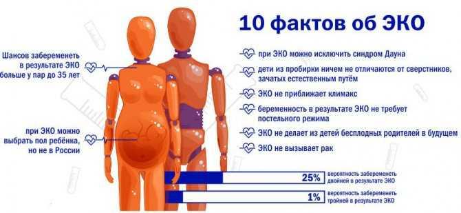 Влияние эко на здоровье женщины: все «за» и «против»