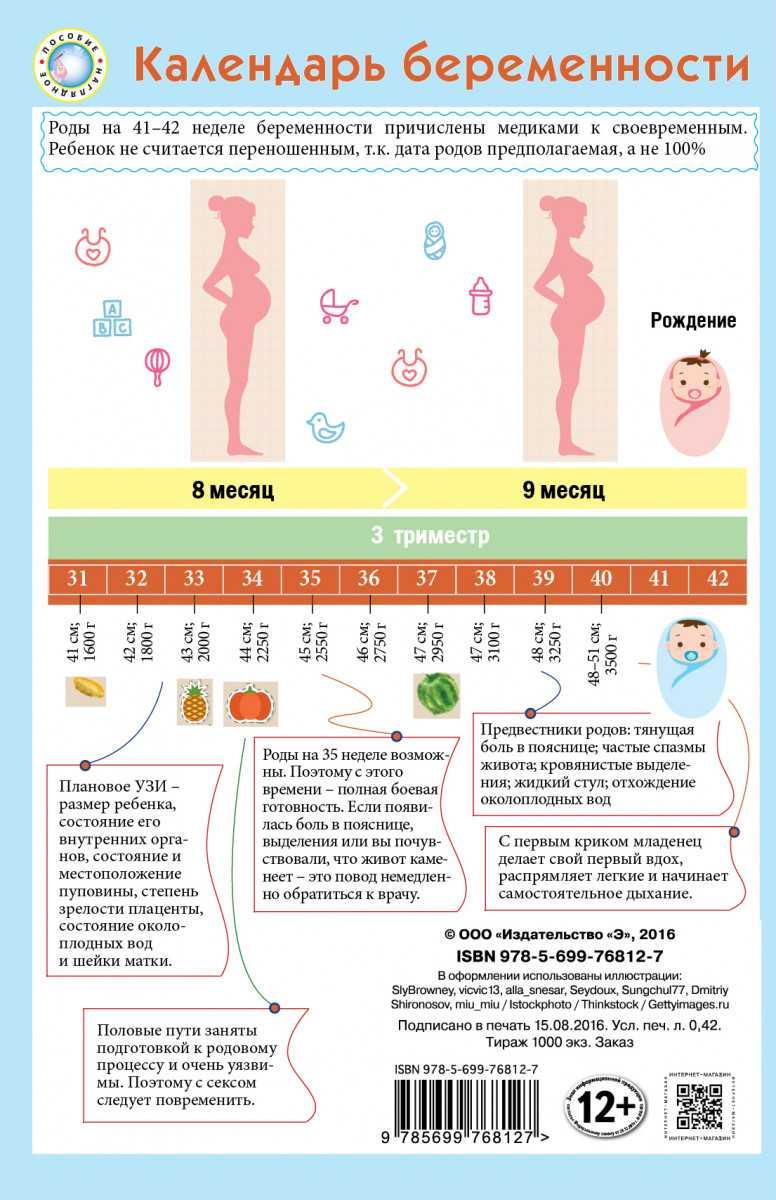 Калькулятор беременности онлайн: рассчитать срок беременности по неделям и дням с описанием
