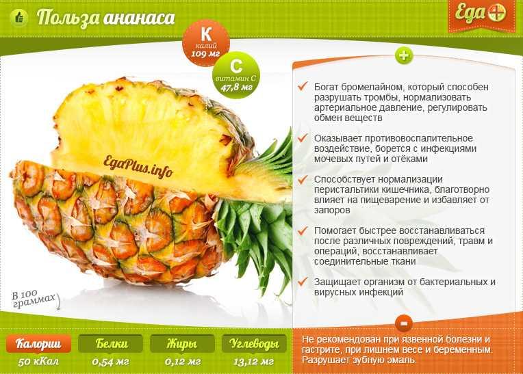 Можно ли есть ананас во время беременности на ранних и поздних сроках?