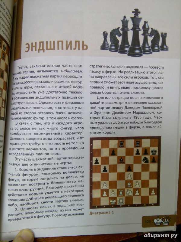 Правила игры в шахматы для начинающих - расстановка шахмат, рокировка в шахматах - шахматы онлайн