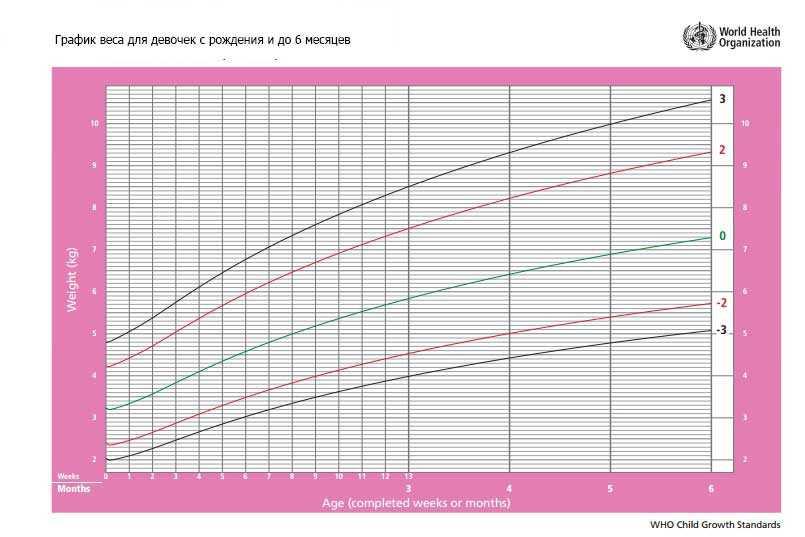 Калькулятор роста и веса ребенка