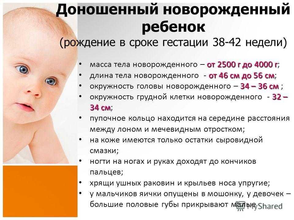 Развитие ребенка в 4 месяца - топотушки