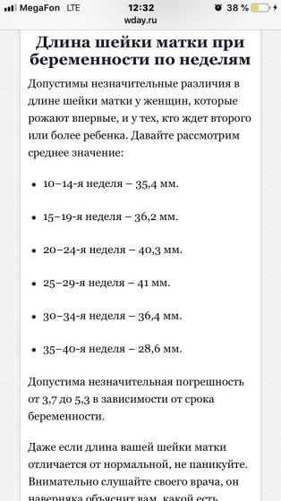 Изменение длины шейки матки по неделям в зависимости от срока беременности
