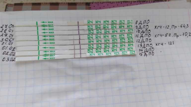 Тест на беременность по дням (24 фото): динамика после овуляции на 5, 6, 7, 8, 9, 10, 11, 12 и 13 дпо, результаты после задержки - детская клиническая больница г. улан-удэ