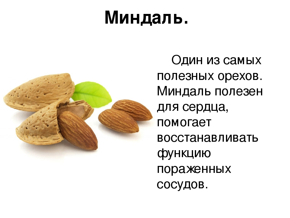 Аллергия на кедровые орехи - почему возникает, симптоматика и профилактика