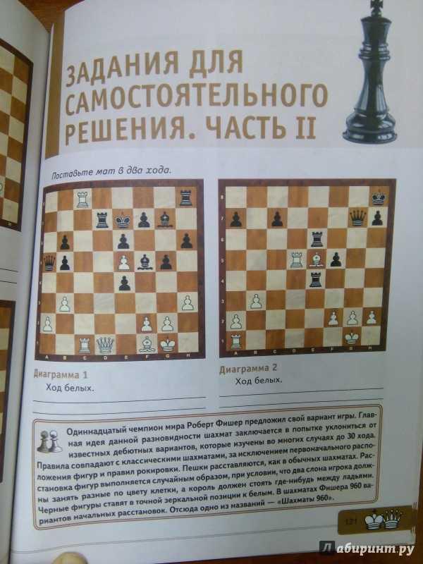 Шахматные фигуры, наименование, количество, как стоят и ходят