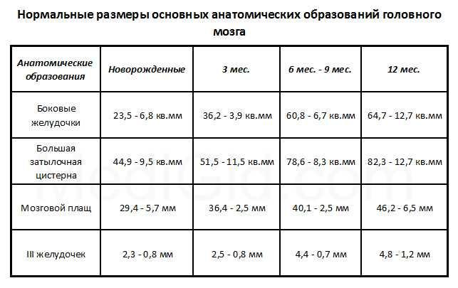 Нсг головного мозга новорожденных: расшифровка нейросонограммы, таблица нормы до года и в 1 месяц, отклонения, контроль, вредно ли, что такое неросонография