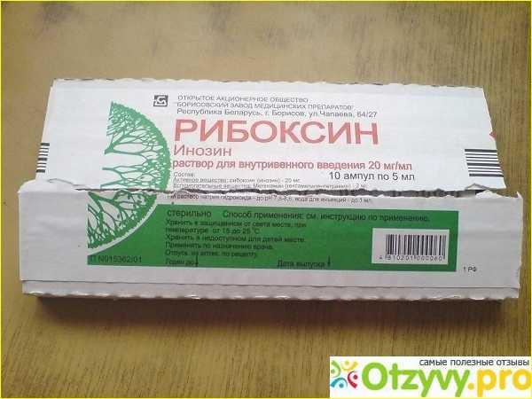 «рибоксин» при беременности: инструкция по применению, для чего назначают беременным, прием таблеток и внутривенно